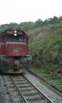 Passeio de Trem: Curitiba – Morretes